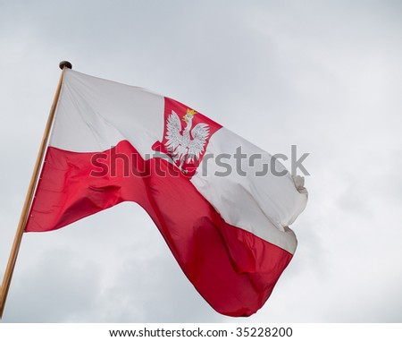 Flag of Poland in the wind - stock photo