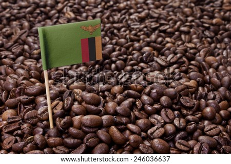 Flag of Zambia sticking in roasted coffee beans.(series) - stock photo
