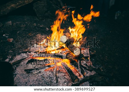 Flames and coals of fire. Burning wood in nature. - stock photo