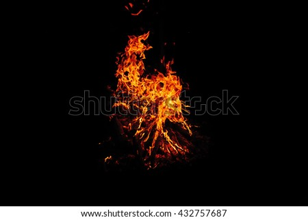 Flames of fire on dark background. Fire in the night. Hot coals. - stock photo