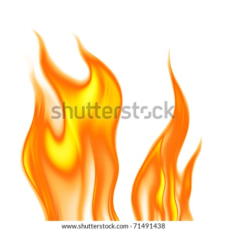 flames on a white background - stock photo