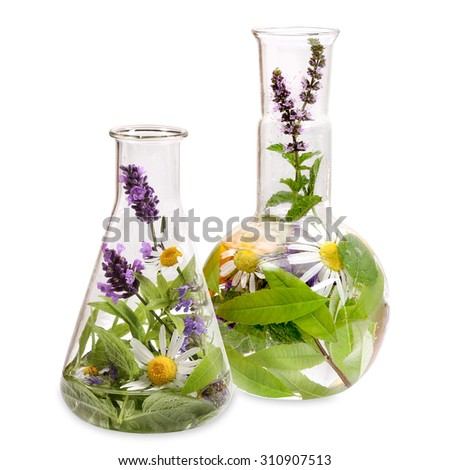 Flasks with medicinal herbs - stock photo