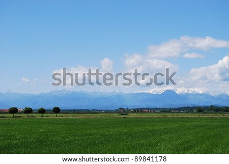 Flat farmland in summer, Alps mountains in background, Po valley, Piedmont, Italy - stock photo