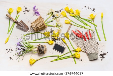 Flat lay with spring flowers, various garden tools:  plant sign , shovel , pot and work gloves  on white wooden background, top view. Gardening concept.  - stock photo