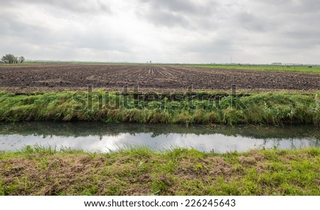 Flat polder landscape on a cloudy day in the Netherlands with a large maize stubble field and in the foreground a ditch. - stock photo