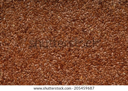 flax-seed - stock photo
