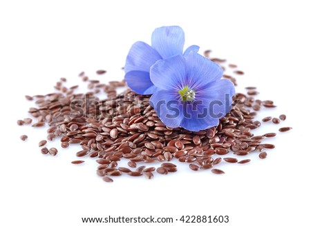 Flax seeds with flowers - stock photo