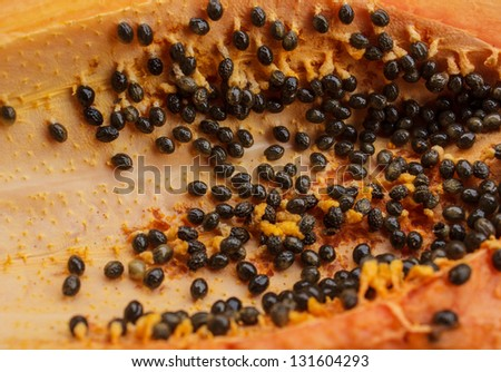 Flesh of the papaya seed are available - stock photo