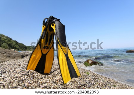 Flippers lying on sandy beach with rocks in the water. Sea and sky background. - stock photo