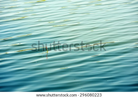 float fishing rod in the water - stock photo
