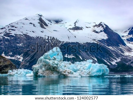 Floating iceberg in Glacier Bay National Park, Alaska - stock photo