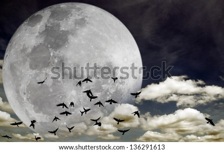 Flock of silhouette birds migrating across a large full moon on a dreamy night sky. Elements of this image furnished by NASA. - stock photo