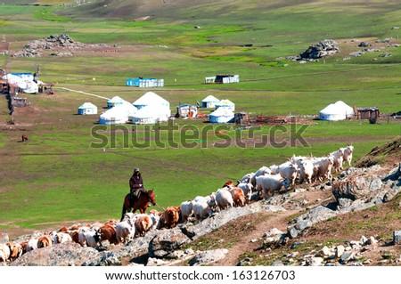 Flocks of change garments according to the migration, goat herdsmen on horseback - stock photo
