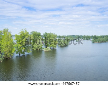 Flood river flow, spilled  forest trees after big thunderstorm. Nature disasters,catastrophe,rainstorm. - stock photo