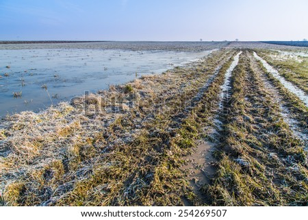 Flooded agricultural field at winter - stock photo
