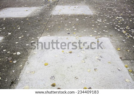 Floor wet leaves in city street, autumn - stock photo