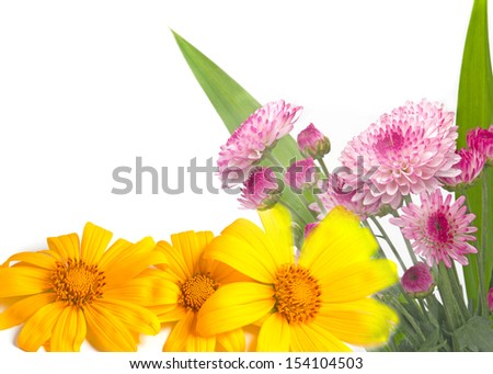 flora and sunflower - stock photo