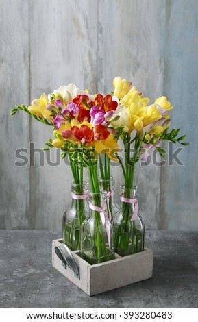 Floral arrangement with colorful freesia flowers - stock photo