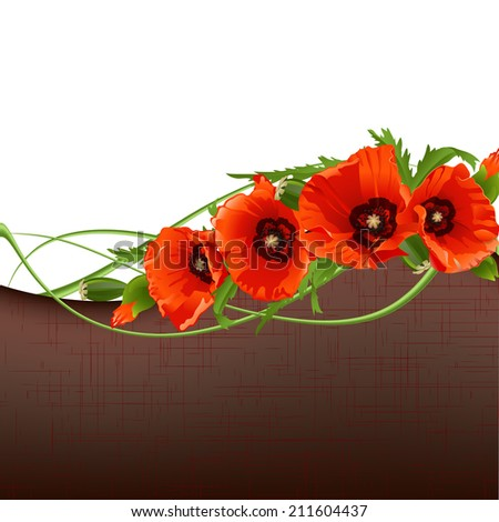 Floral background with red poppies. - stock photo