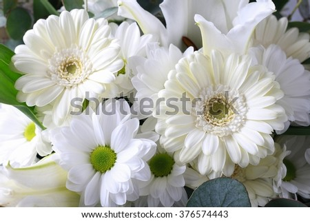 Floral background with white gerbera flowers, chrysanthemums and lilies. - stock photo