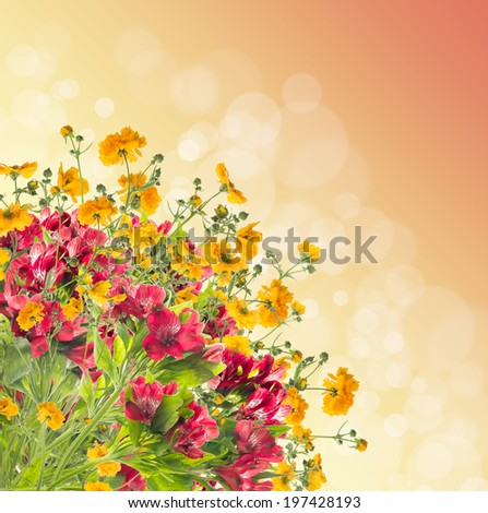 Floral border on bokeh background - stock photo