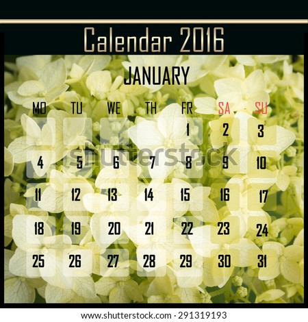 Floral 2016 calendar design for january month - stock photo