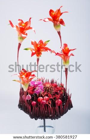 floral composition, florist, cactus  - stock photo