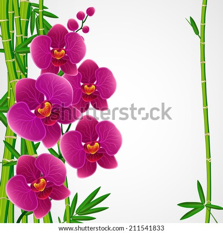 Floral design background. Bamboo and orchids. - stock photo
