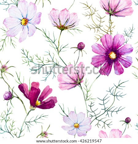Floral pattern kosmeya, delicate pink and white flowers, wild flowers, white background - stock photo