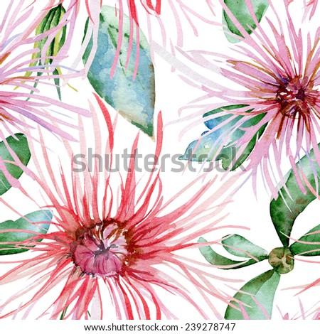 Floral pattern. Watercolor seamless background. Pink  chrysanthemum - stock photo