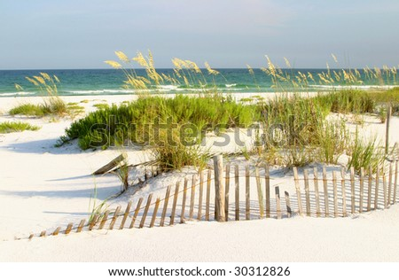 Florida Beach, Sand Dunes and Sea Oates - stock photo