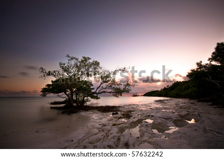 Florida Keys landscape - stock photo