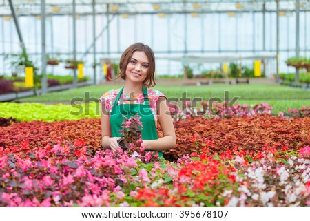 Florists woman working with flowers at a greenhouse. Springtime - stock photo