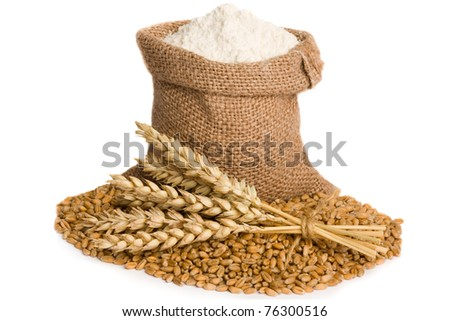 Flour in small burlap sack and wheat seed - stock photo