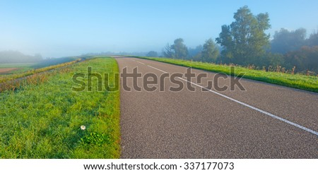 Flower along a road on a hill - stock photo