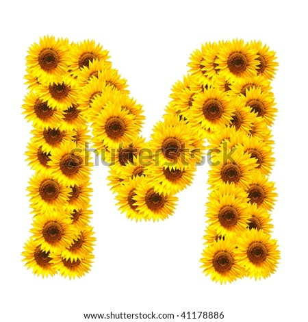 flower alphabet and numbers with sunflowers isolated on white background - stock photo
