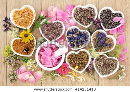 Flower and herb medicine selection used in alternative healing treatments in heart shaped porcelain bowls with mortar and pestle over oak background. - stock photo