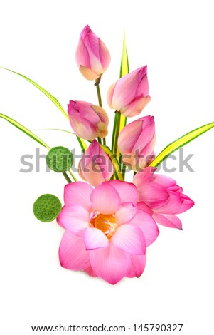 Flower arrangements with lotus on isolate white background. - stock photo