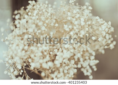 flower background. beautiful flowers made with vintage filters - stock photo