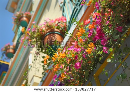 Flower Baskets, Victoria, BC. Flower baskets brighten up the outside of a hotel in downtown Victoria. British Columbia, Canada.  - stock photo