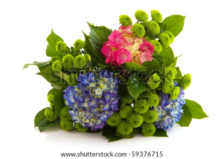 Flower bouquet with hydrangea and Chrysanthemum - stock photo
