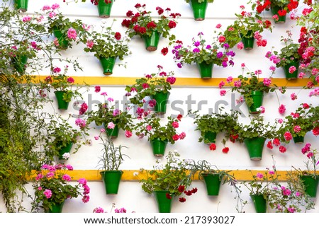 Flower Decoration of  the Wall - Old European Town, Patio Festival, Cordoba, Spain - stock photo