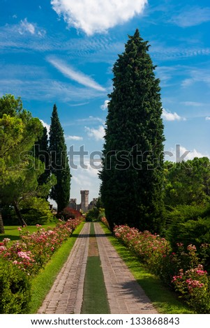 Flower-filled alley in the park - stock photo