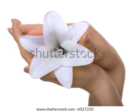 Flower in a hand - stock photo