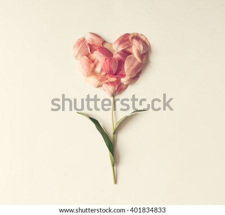 Flower in shape of a heart made of tulip petals. Love concept. - stock photo