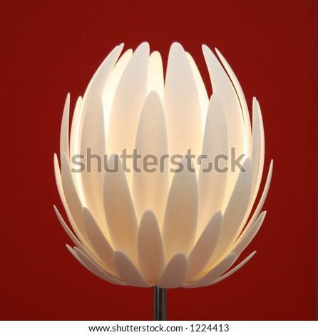 flower lamp - stock photo