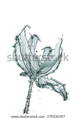 flower made of water on white background - stock photo