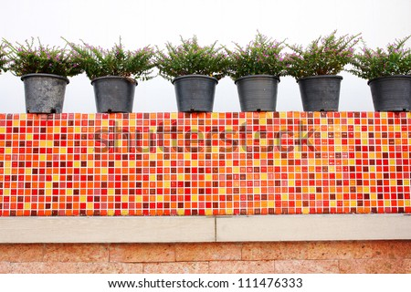 flower pots with colorful wall - stock photo