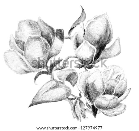 Flower sketch  bouquet hand drawing - stock photo
