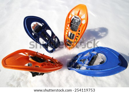 flower with two pair of modern snowshoes - stock photo